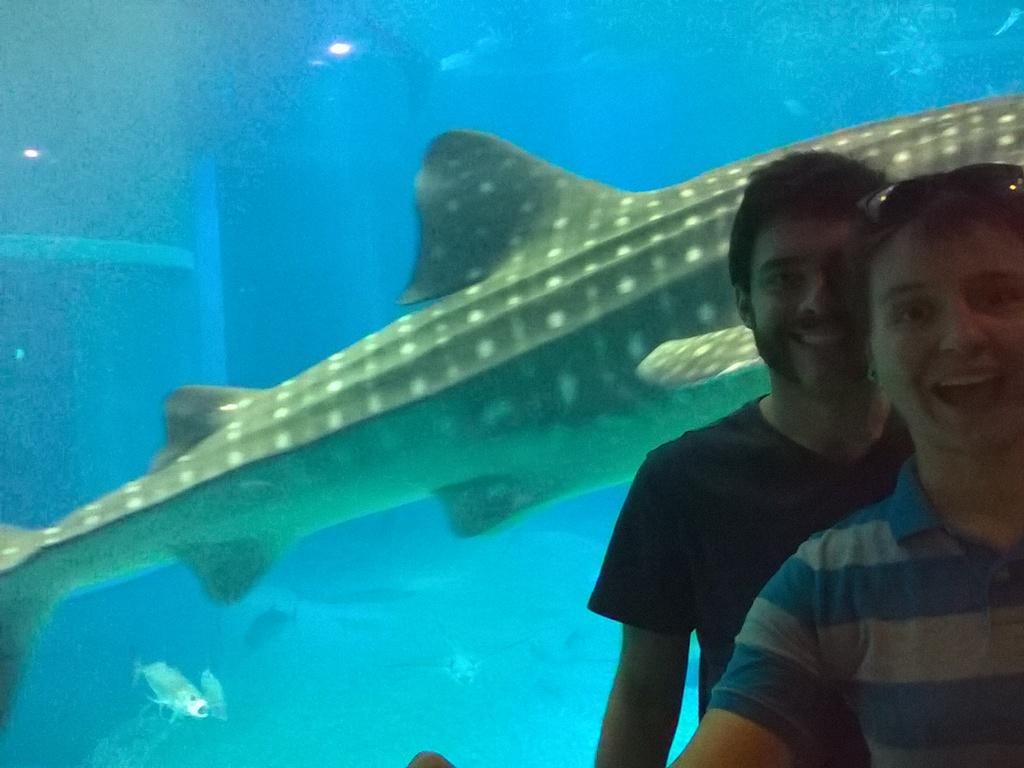 japan day 2 aquarium osaka castle umeda sky building bitlather chronicles